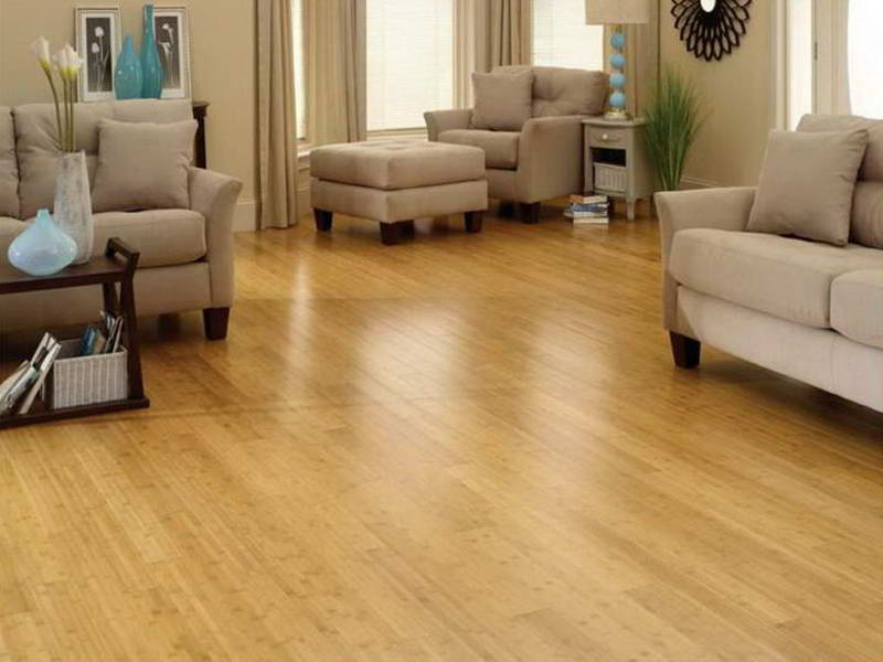 Bamboo Vs Cork Flooring Which Is Better Household Decoration
