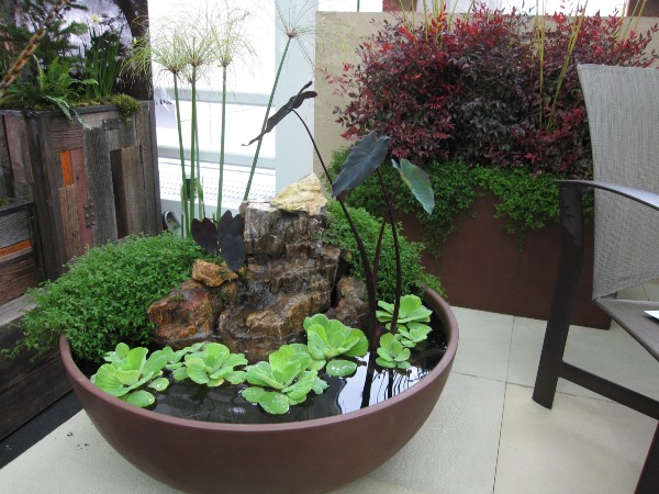 Indoor-Container-Gardening - Household Decoration