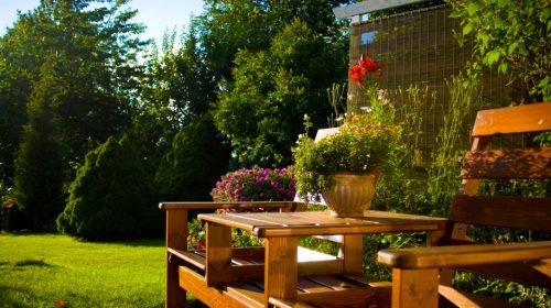 Backyard Ideas : Make your backyard stand out from the rest!